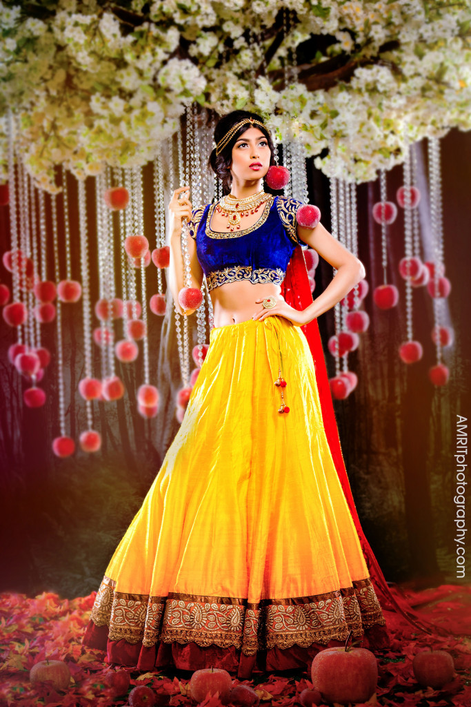 image via http://bridalguide.com/blog/disney-princesses-as-indian-brides